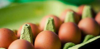 cara menyimpan telur yang baik