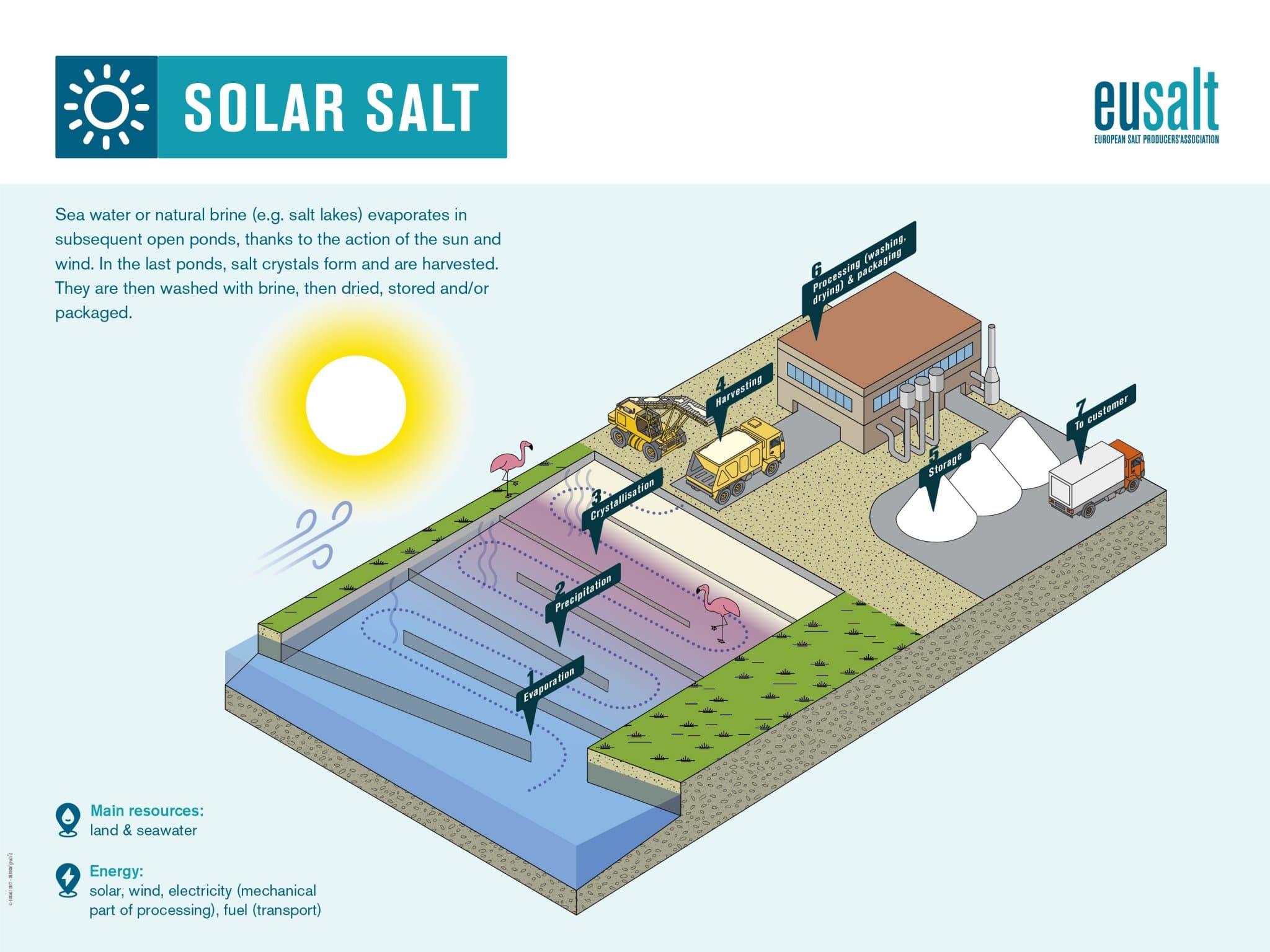 proses-produksi-garam-dalam-negeri